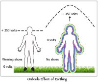 Earthing: Health Implications of Reconnecting the Human Body to the Earth's Surface Electrons